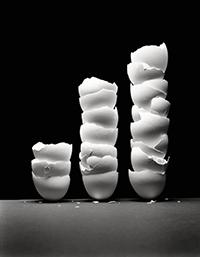 Egg Shells by Craig Cutler - http://craigcutler.com/